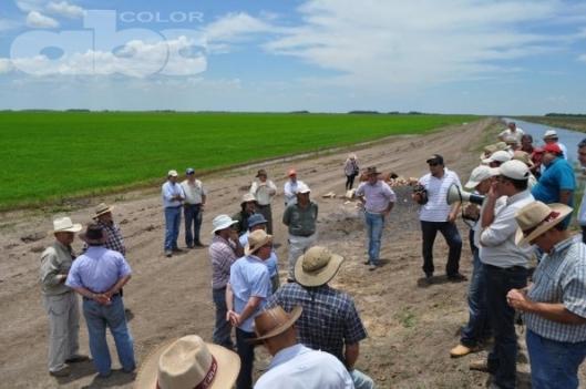 Foto/ ABC Rural